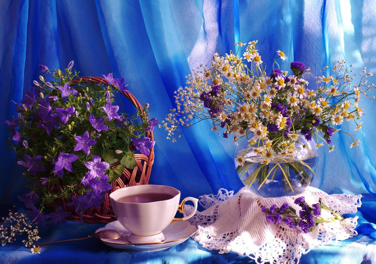 это увлекательное, фото доброго утра и дня замечательного друзья дорогие читатели, что